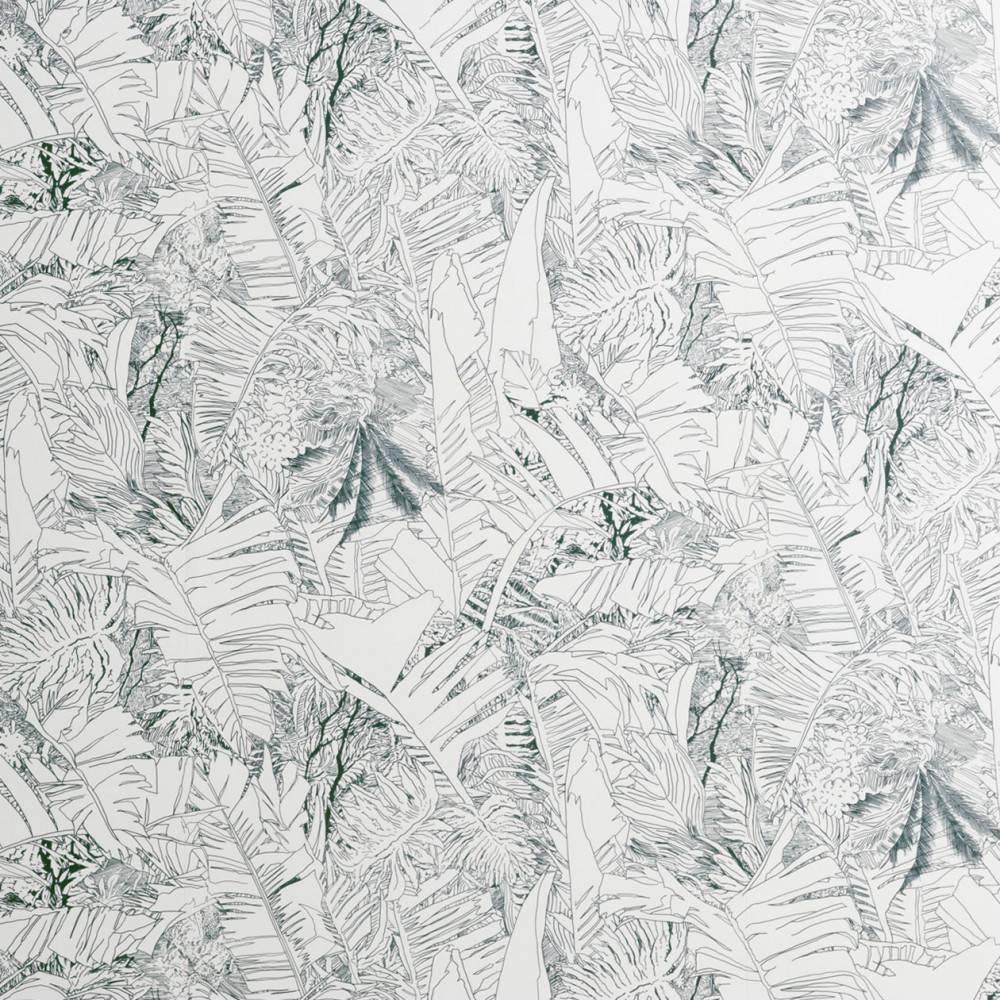Papier Peint Noir Et Blanc Graphique papier-peint jungle